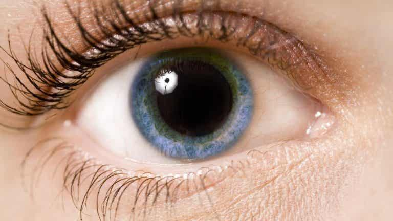 What Our Pupils Reveal