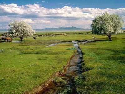 creek-countryside
