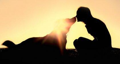 dog love2
