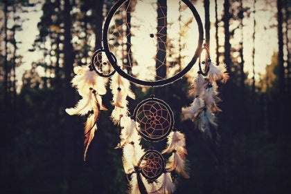 dreamcatcher in the woods