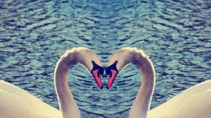 love-2-420x235