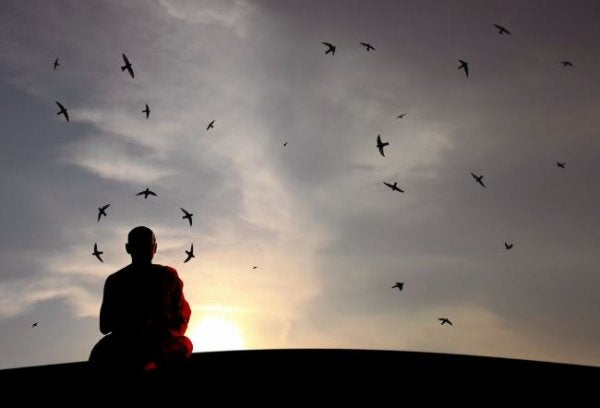 A person meditating among birds.