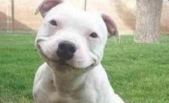 smiling-3