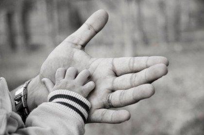 Fatherhood and the Brain
