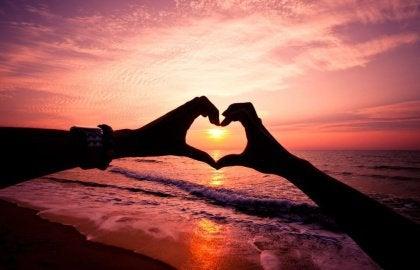 Hands making a heart shape around a sun setting