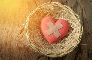 patched-heart-in-nest