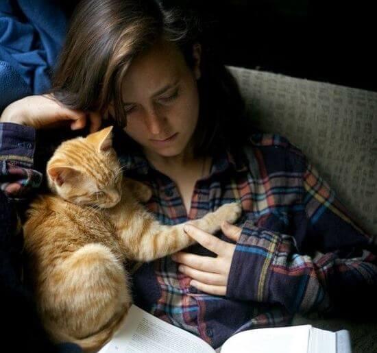 cat snuggle