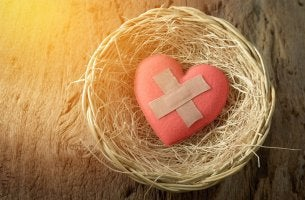 heart with bandaids in nest