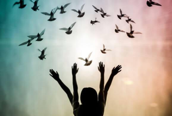 ihmiset ja linnut