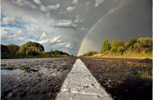 Rainbow over Rainy Road