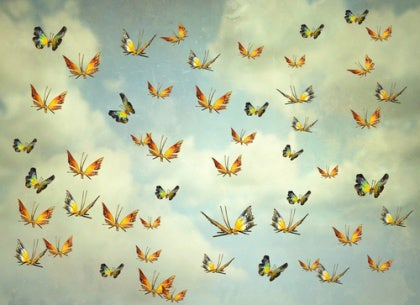 Perhoset ja todellisuus