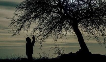 Mies yksin puun alla