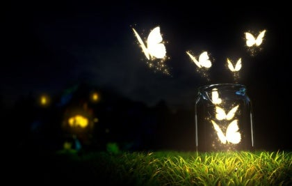 Butterflies Flying out of Jar