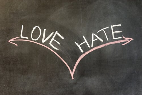 Viha ja rakkaus