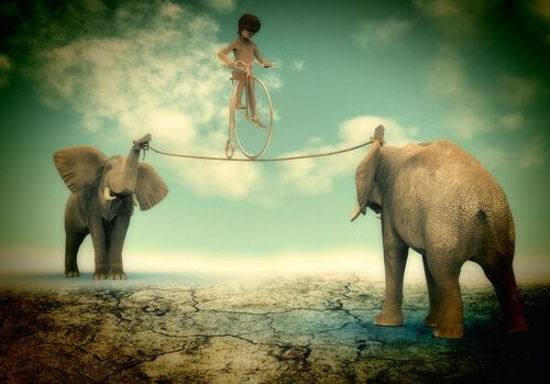 boy balancing on a rope held by two elephants