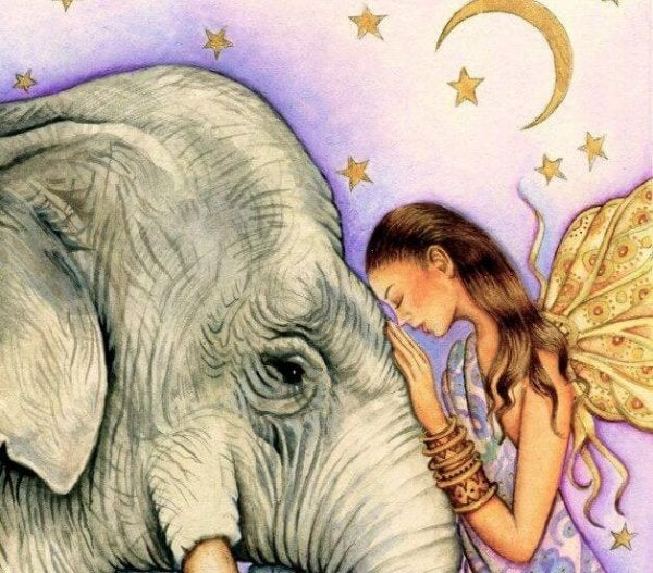 fairy and elephant