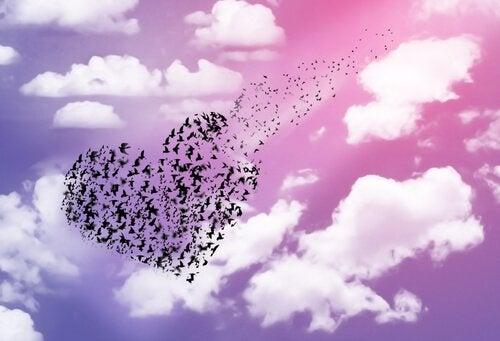 heart made of birds flying