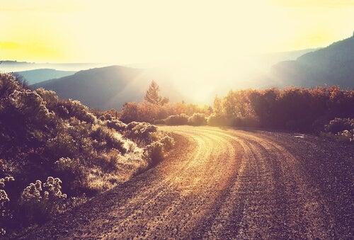 Runous ja polku vuoristossa