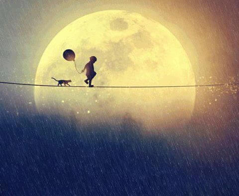 Child and Cat Walking Line in Front of Moon