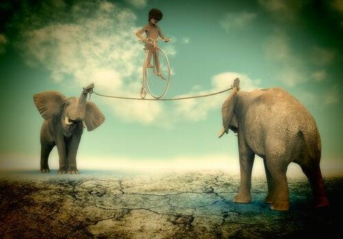 Tightroping Between Elephants