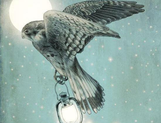 bird and lantern
