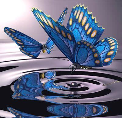 butterflies and water