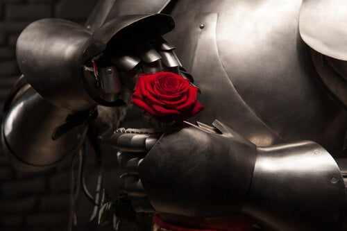 Knight with Rose