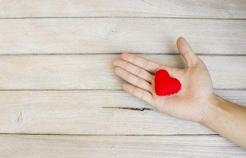 felt heart in hand