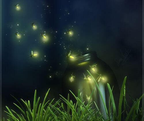 jar of fireflies escaping to represent life's transcience