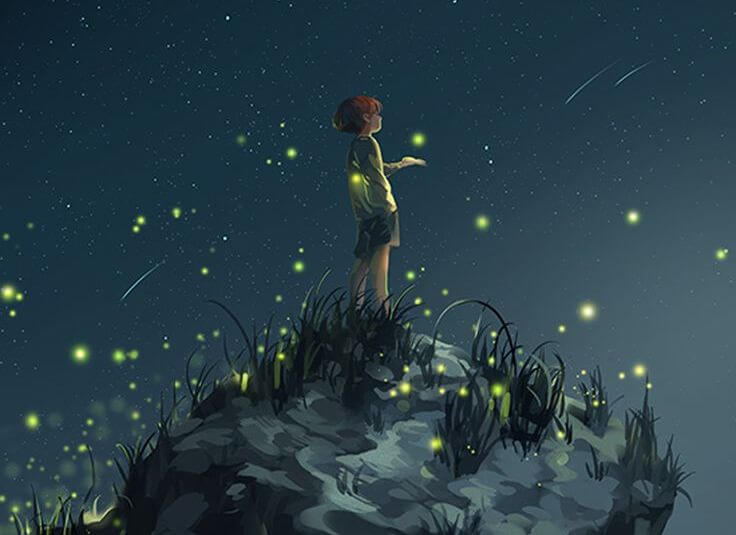 Boy with Fireflies and Shooting Stars