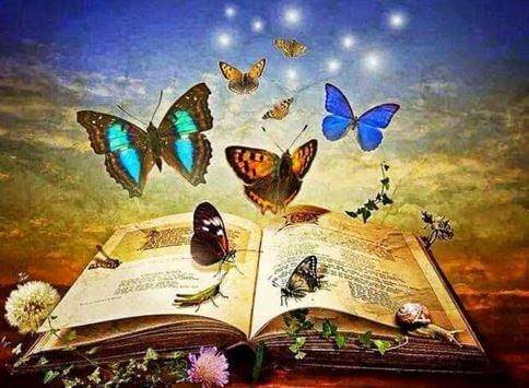 Book Full of Butterflies