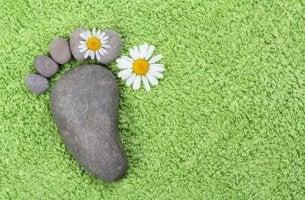 stones shaped like a footprint
