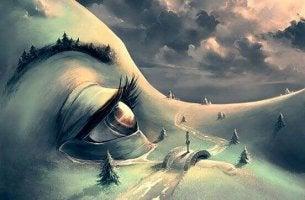 face landscape