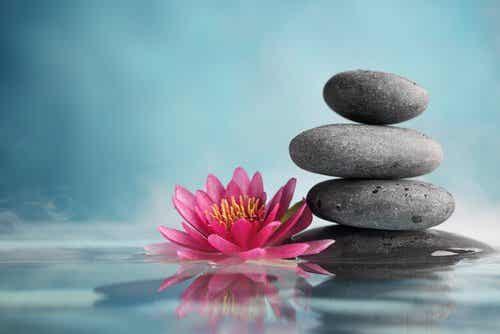 29 Zen Phrases to Inspire You