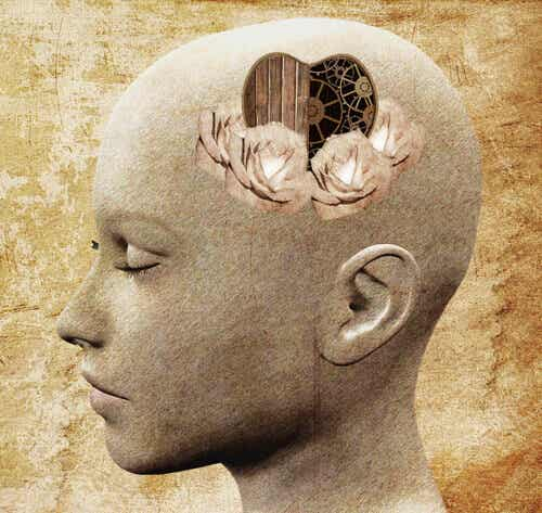 Emotional and Rational Empathy: How Do They Manifest Themselves in Our Brains?