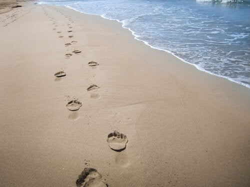 footprints of a person in the sand