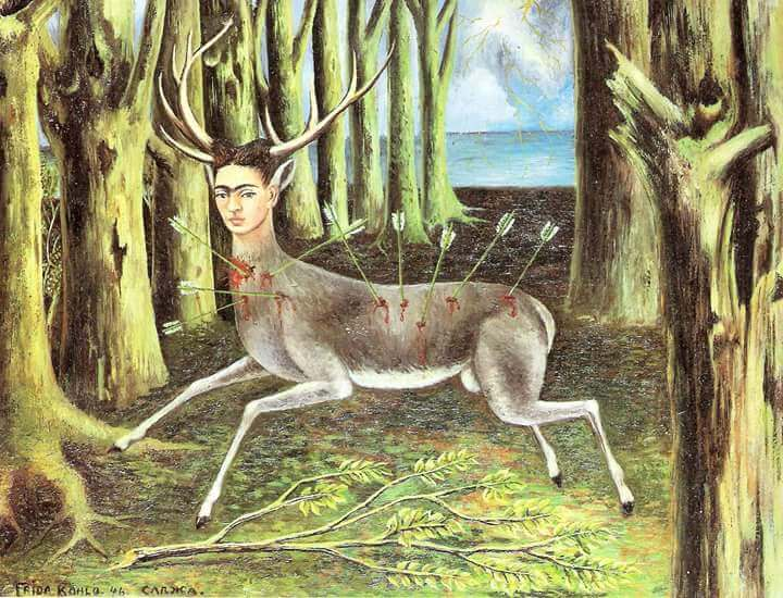 frida as a wounded deer