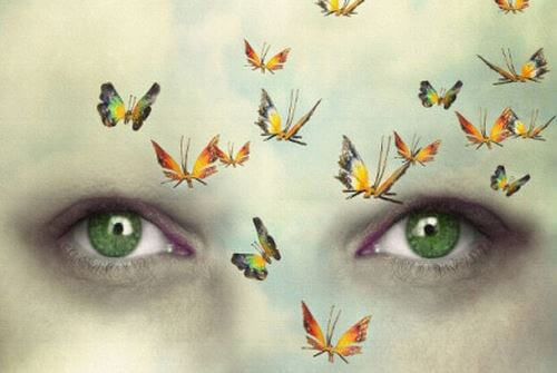 Eyes With Butterflies Around Them