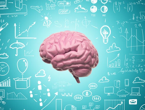 Thanks to Neuroplasticity, We Never Stop Learning