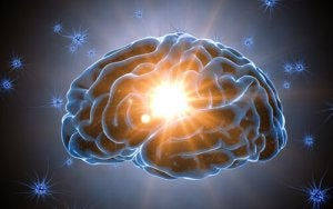 brain with a light in the middle