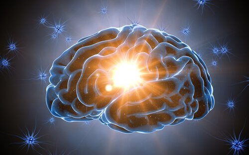 Cognitive Reserve Protects the Brain