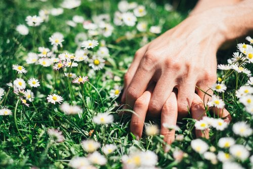 couple holding hands in grass