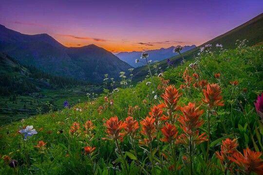 pretty landscape