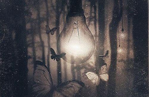 Sommerfugler rundt lyspære