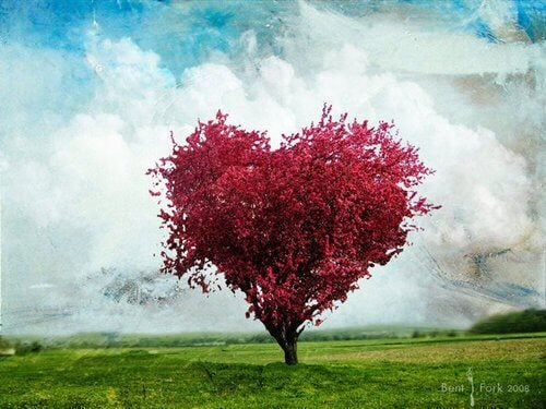 pink tree in the shape of a heart