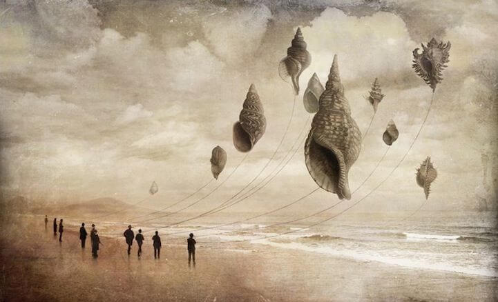seashells-flying-like-kites