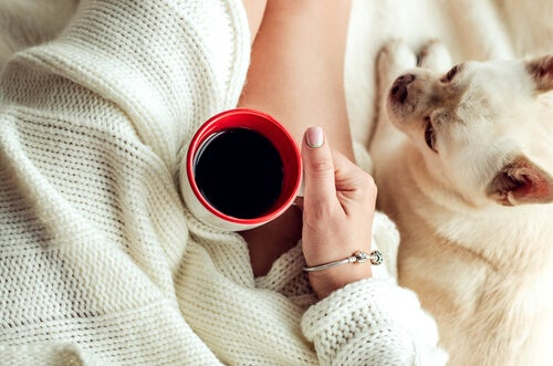 5 Strategies to Overcome Laziness