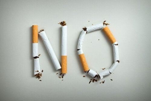 담배로 만든 NO