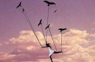 birds carrying woman