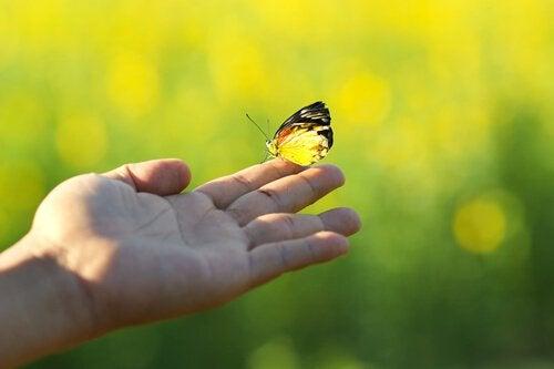 나비: 알베르 카뮈의 명언